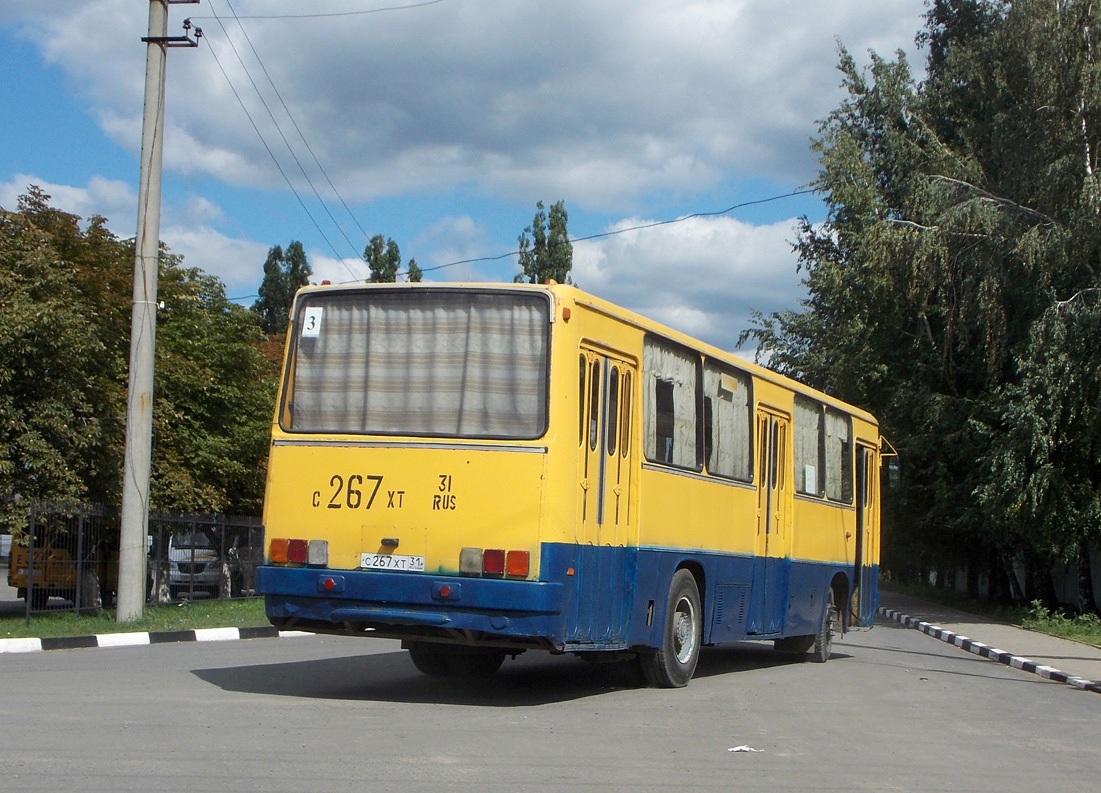 735080.jpg