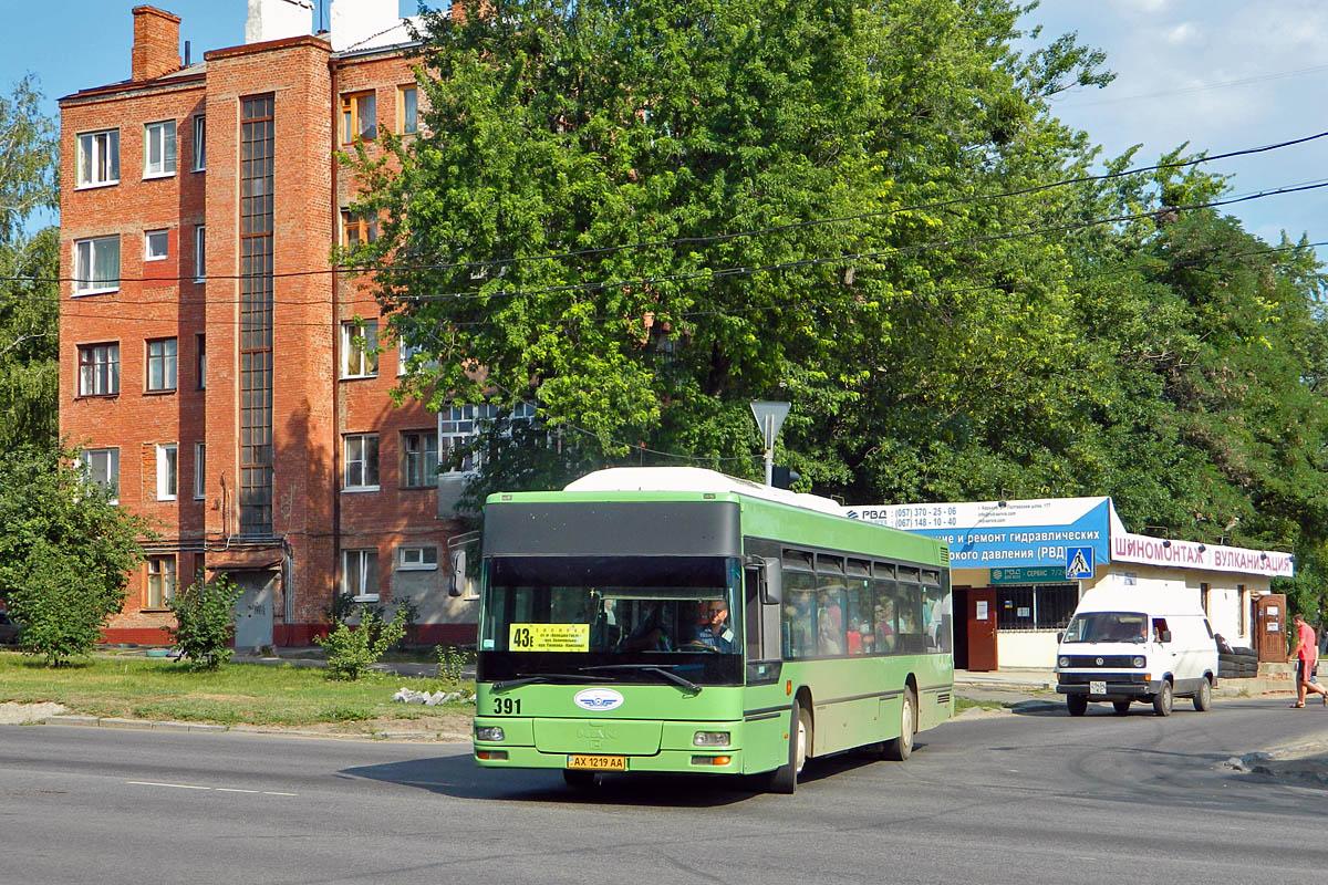 Kharkov region, Caetano City Gold # 391
