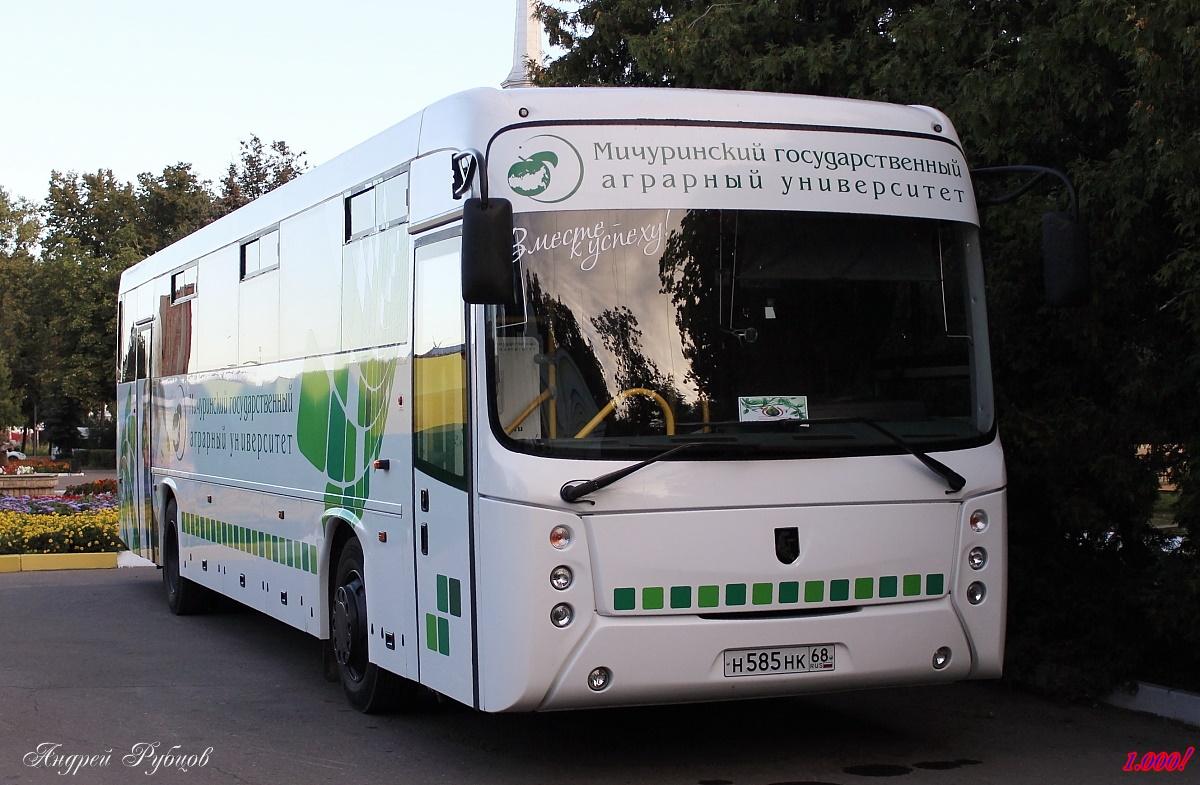 Tambov region, NefAZ-5299-37-42 (5299ZT) # Н 585 НК 68