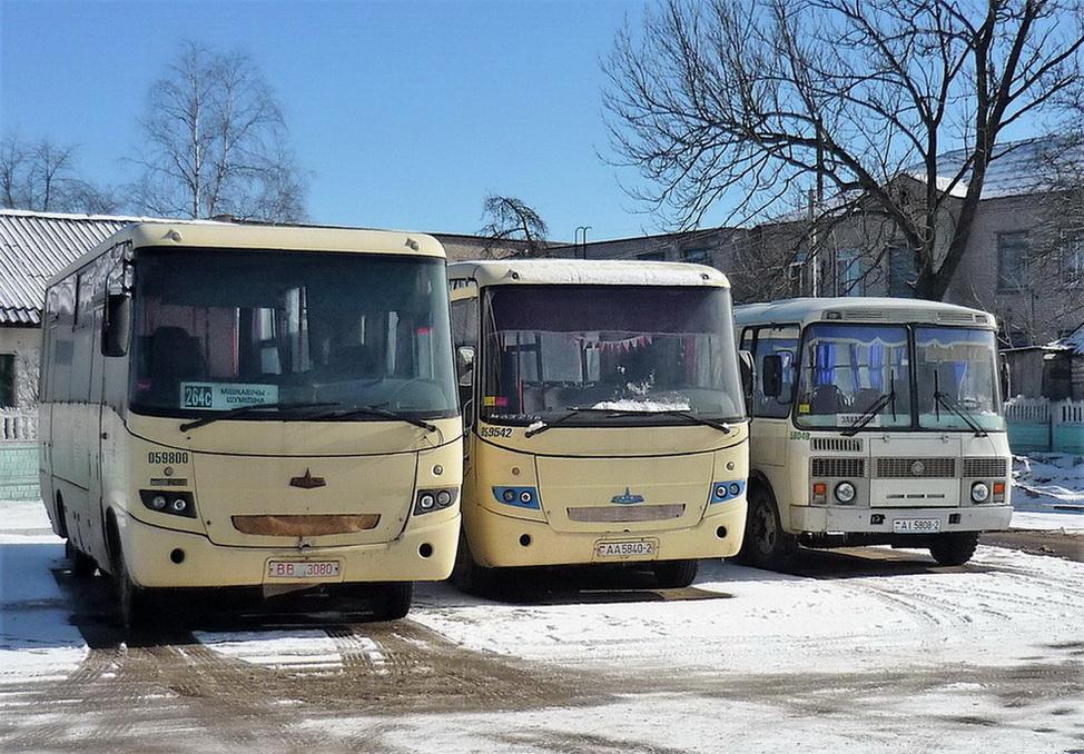 Vitebsk region, MAZ-256.*** # 059800